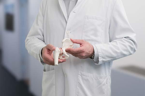 Modell Hüfte mit Arthrose Dr. med. Christian Diezi